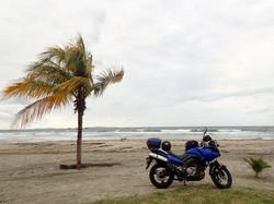 Tela - Honduras