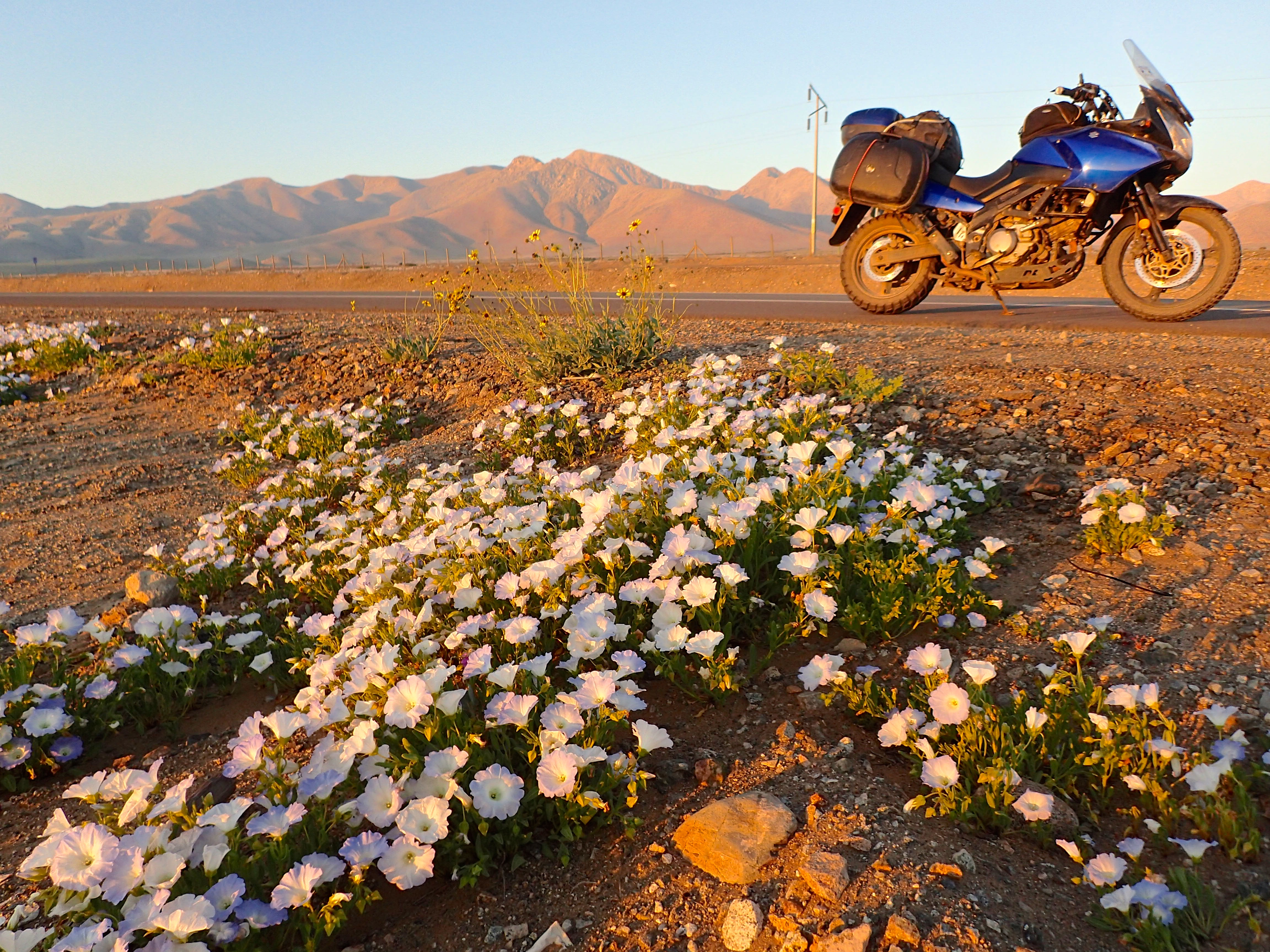 Desierto de Atacama - Chile
