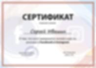 Сертификат Ивашина С.Б. по FB и Inst....