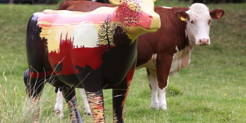 An udderly moo-vellous day out - FREE