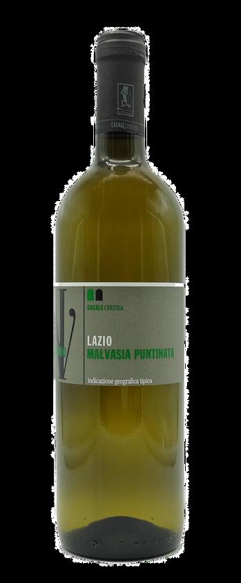 CASALE CERTOSA (LAZIO) - Malvasia Puntinata 2019 - 100% malvasia puntinata