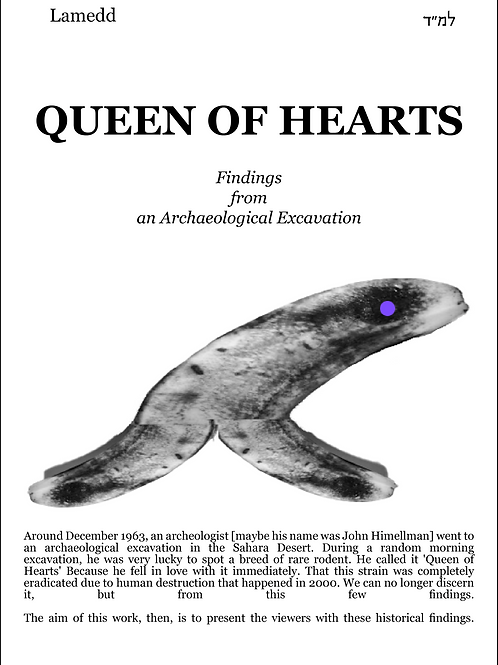 Queen Of Hearts A4 Poster   004