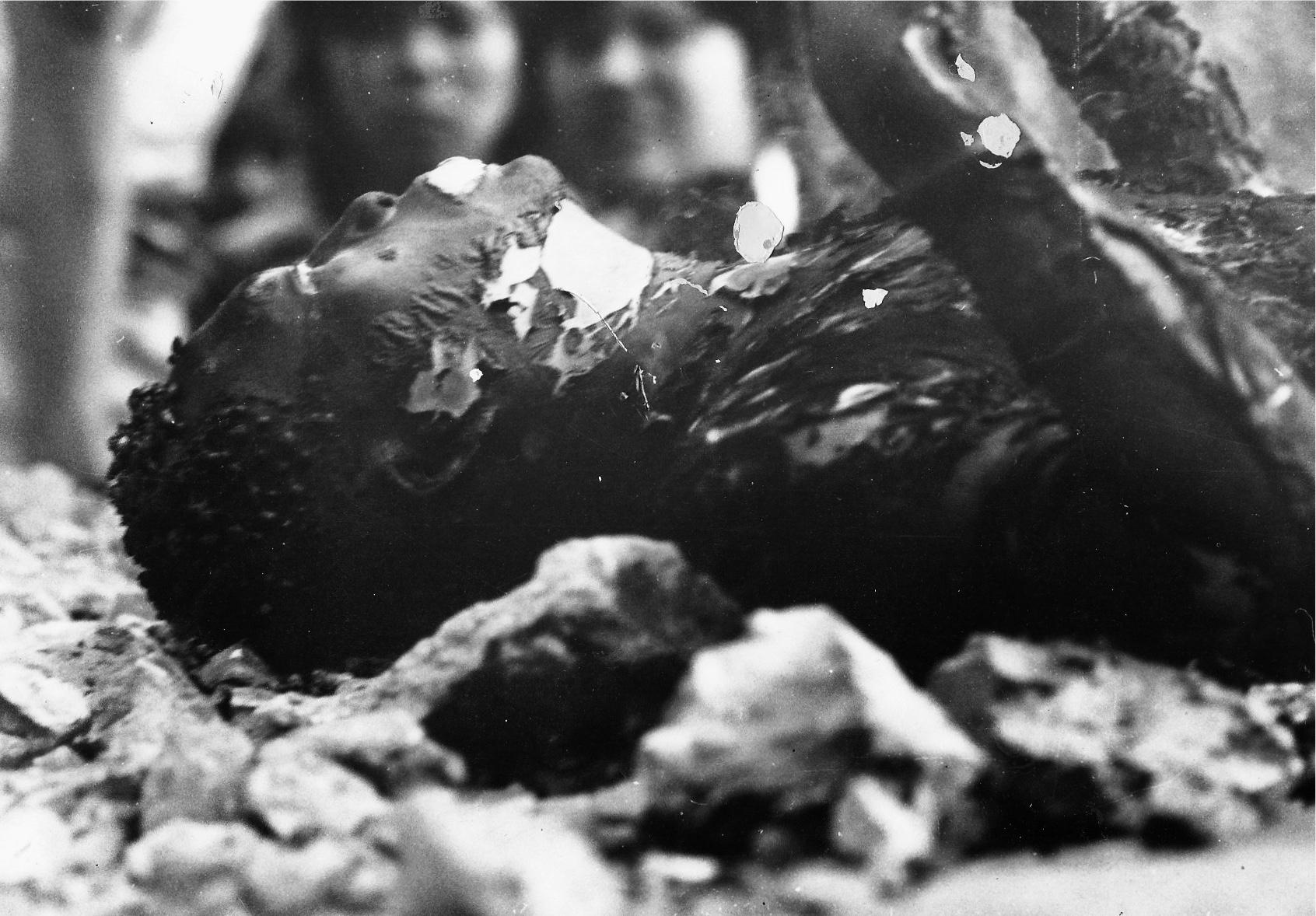 Un officier Sud vietnamien s'immole