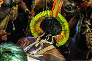 A Amazônia pede ajuda, como evitar o seu fim?