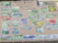 objectif yakafokon arrêt des pesticides au jardin