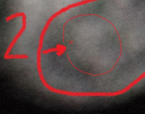 2f.jpg