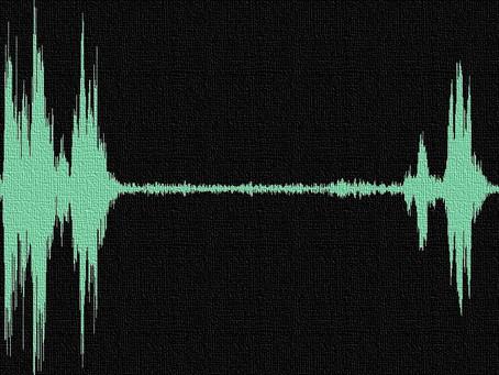 Electronic Voice Phenomenon  (EVPs)
