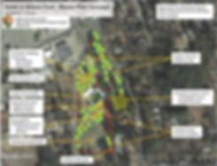 MW Park - Master Plan Concept.jpg