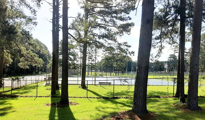Tennis Court Beauty_edited.jpg