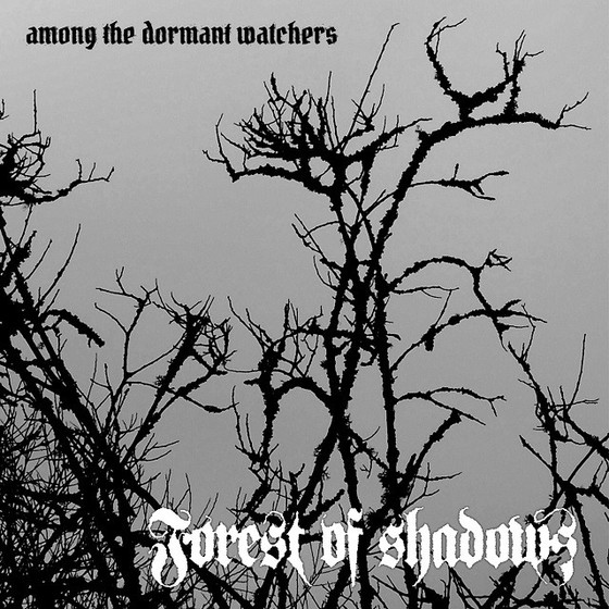 REVIEWED: Forest of Shadows' 'Among the Dormant Watchers'