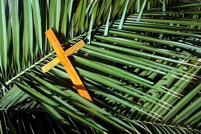 palms & cross.jpg