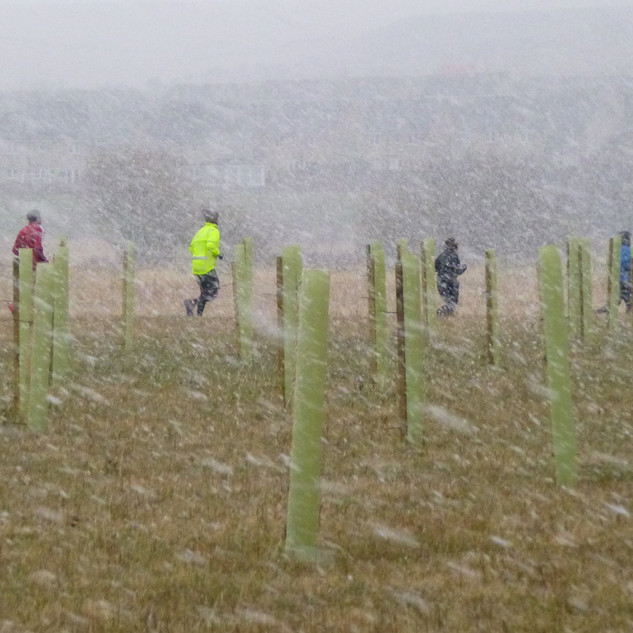 P1050578 parkrunners braving snowstorm 2