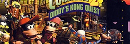 Donkey Kong Country 2 (Cosmetic Damage)