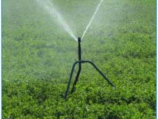 Breve revisión a los aspectos relacionados con la eficacia del riego