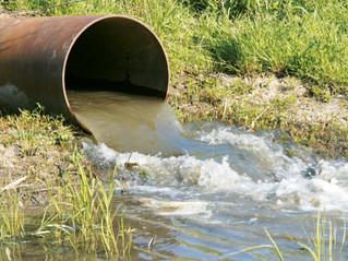 Riego agrícola con agua regenerada