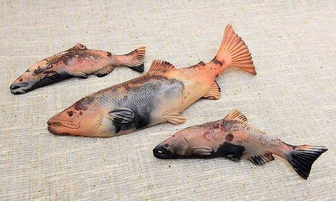 Chris.Boyd-Pit-Fired-Salmon.jpg