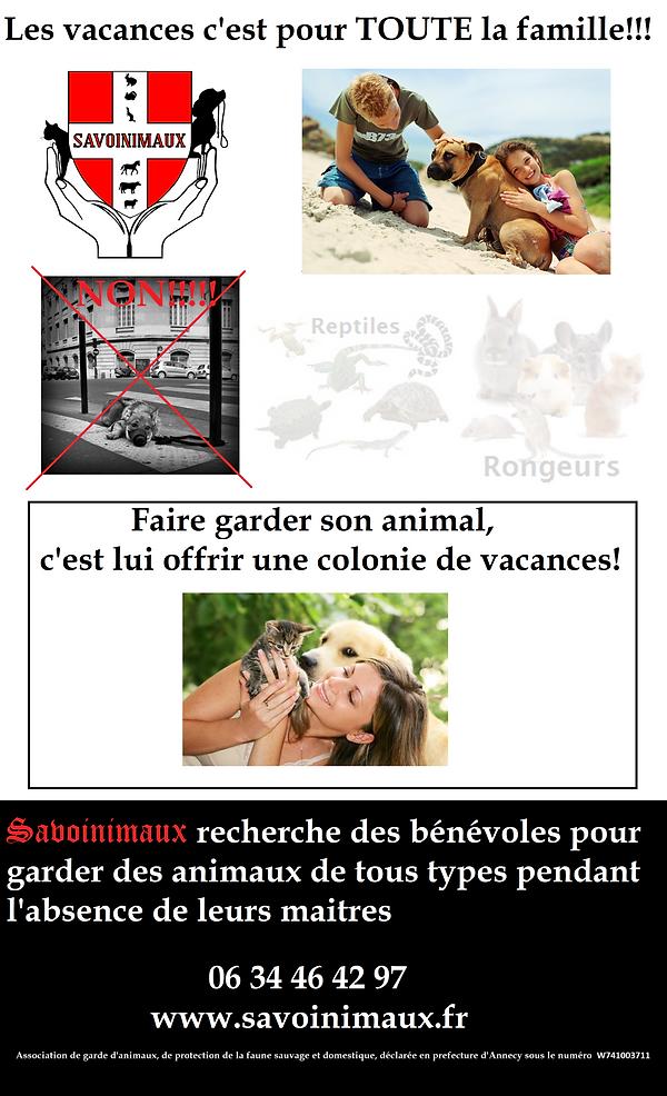 abandonner un animal, chien attaché arbre, abandon, vacances, été, hiver, protection animale, SPA, refuge pour animaux, garde animalière, nounou pour animaux