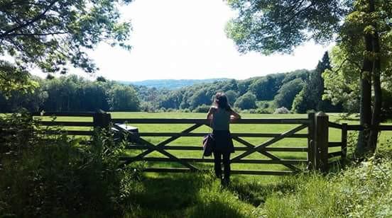 Painswick natural mindfulness walk