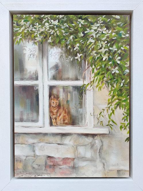 'Ginger Tom of Tibbiwell' Original Oil Painting