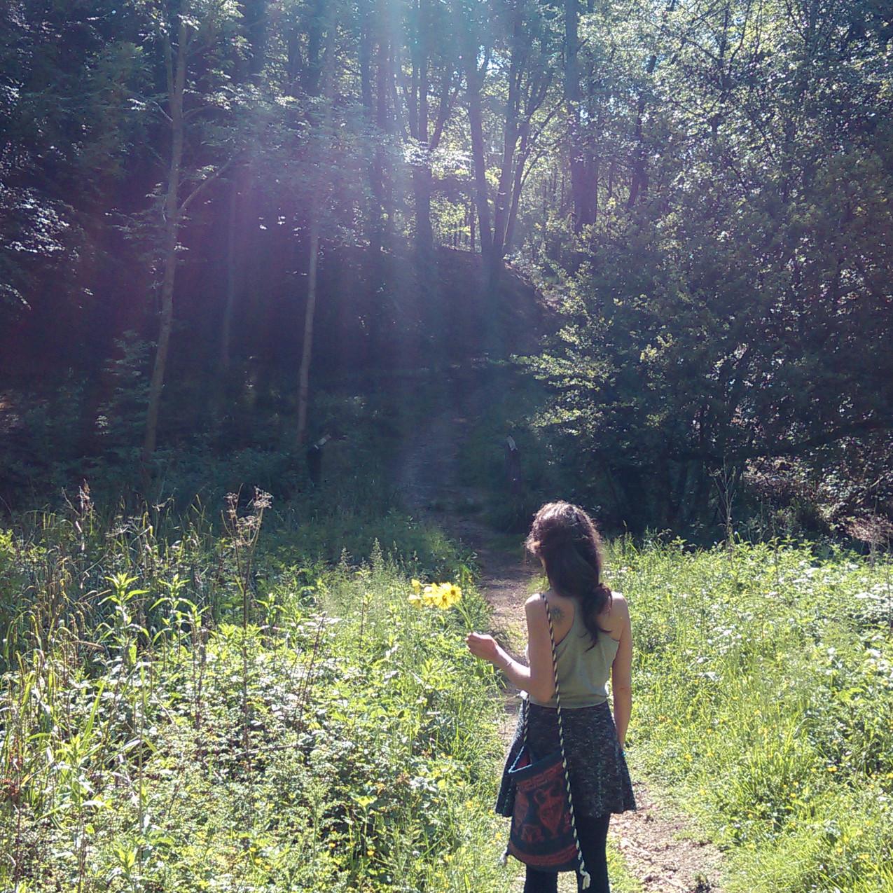 Cranham mindfulness walk sunshine