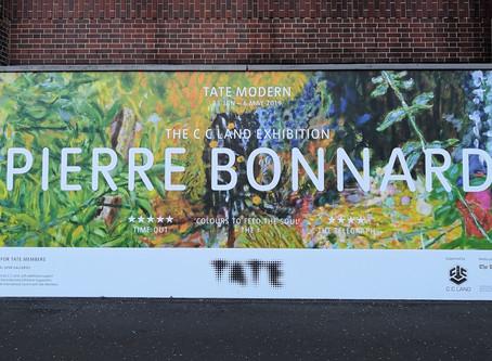 Bonnard Art Exhibition at the Tate Modern