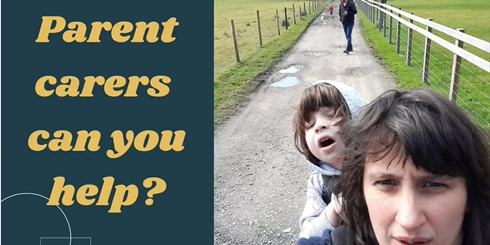 Parent Carers mini course