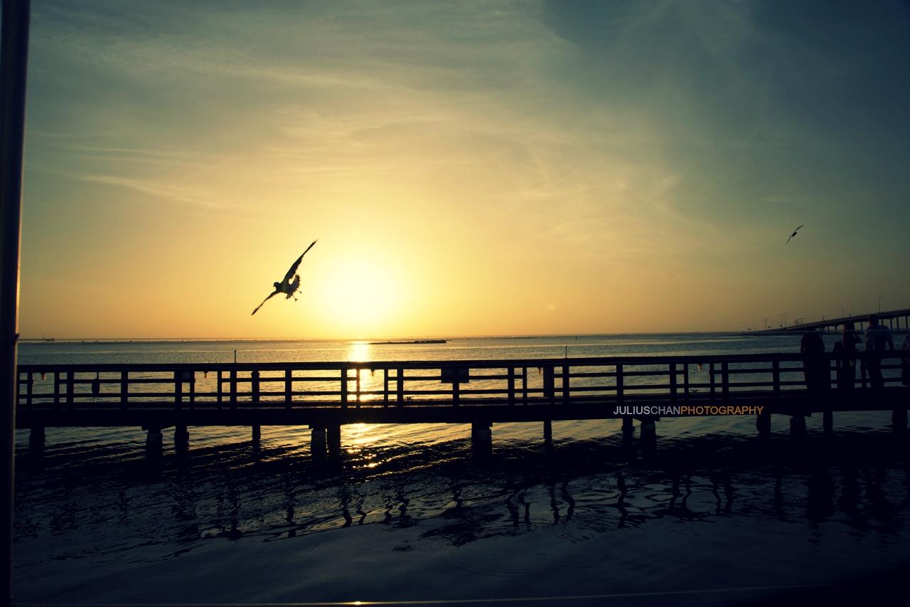 Corpus Christi Sunset 5