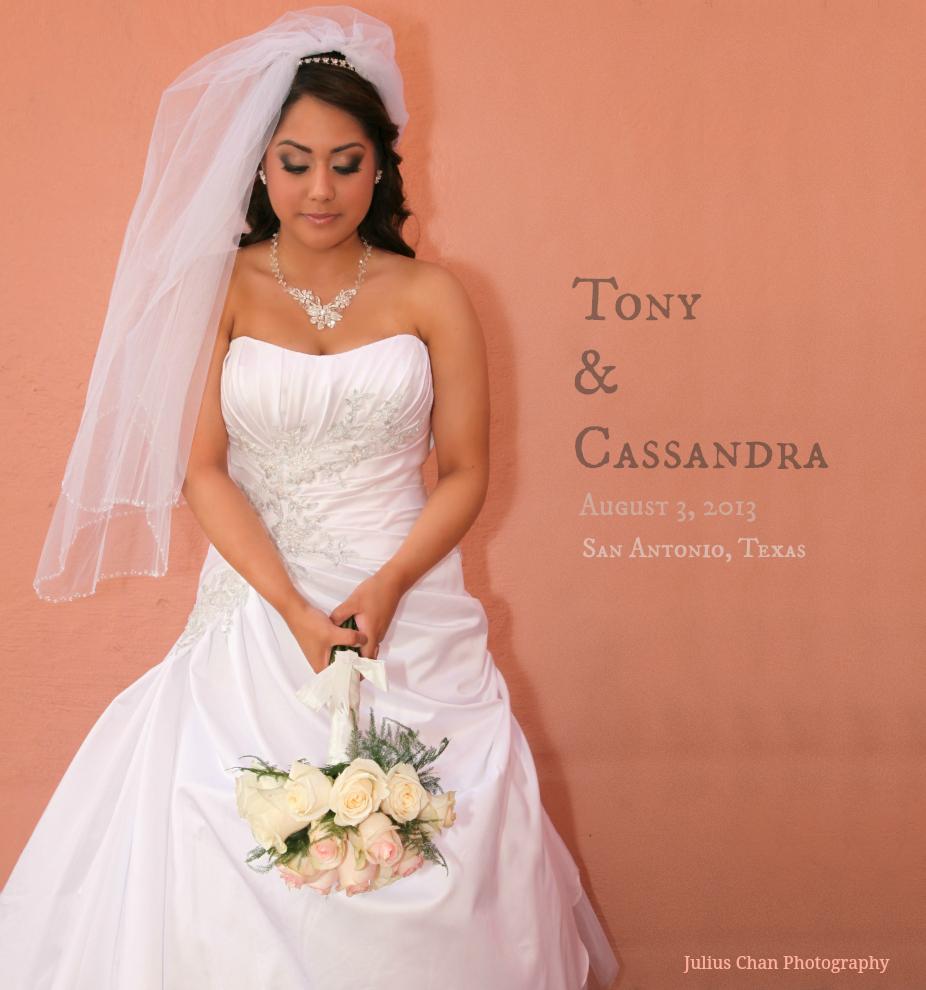 Book+Cover+Cassandra+1