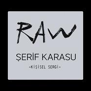 Şerif Karasu