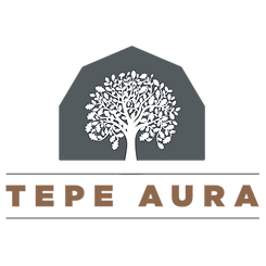 TepeAura.png