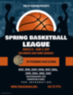 2019 FBAD Spring League Poster.jpg