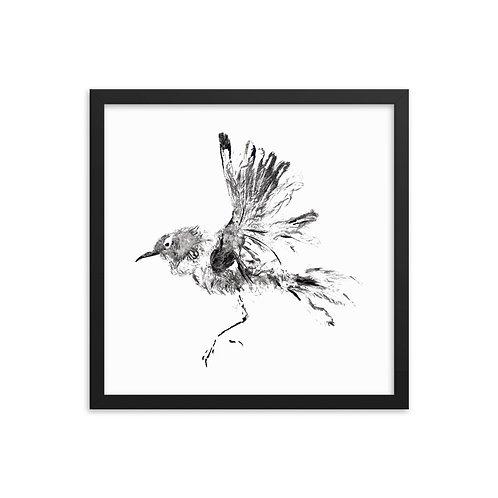 Framed photo paper poster - Winter Wren (IA60V1)