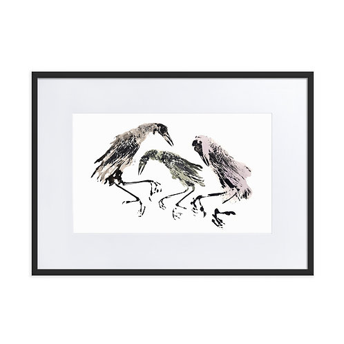 Matte Paper Framed Poster With Mat - Great-tailed Grackle (IA76V8)