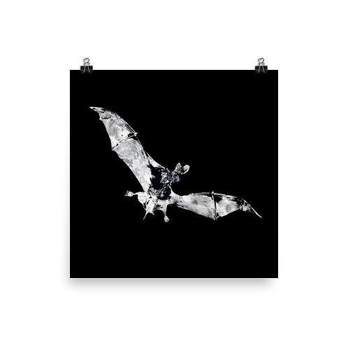 Poster - Mexican Free-tailed Bat (IA55V1_inverted)