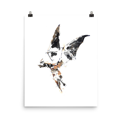 Poster - Mexican Free-tailed Bat (IA55V2)