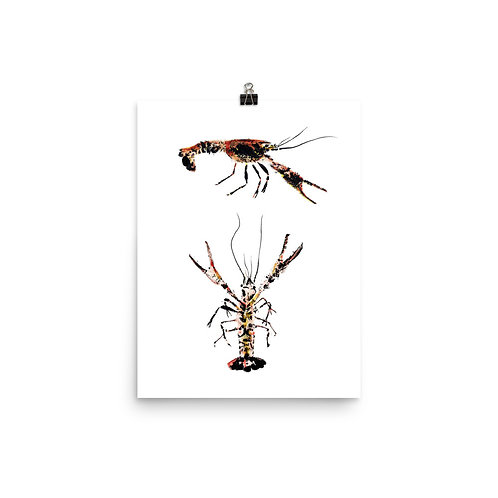 Poster - Red Swamp Crayfish (IA96V5)