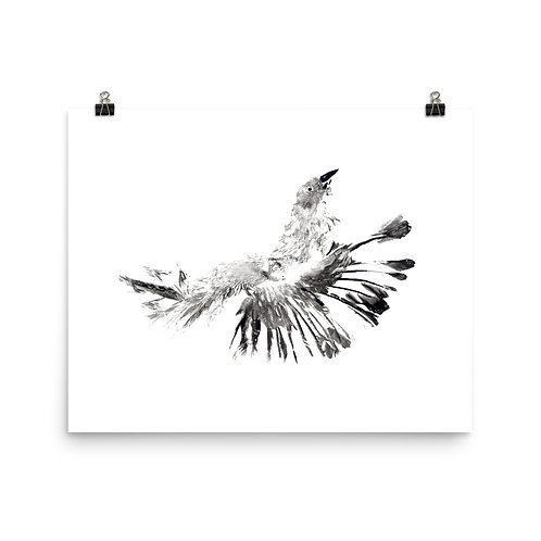 Poster - House Sparrow (IA62V1)