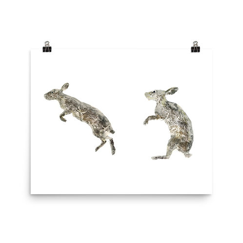 Poster - Eastern Cottontail Rabbit (IA84V)