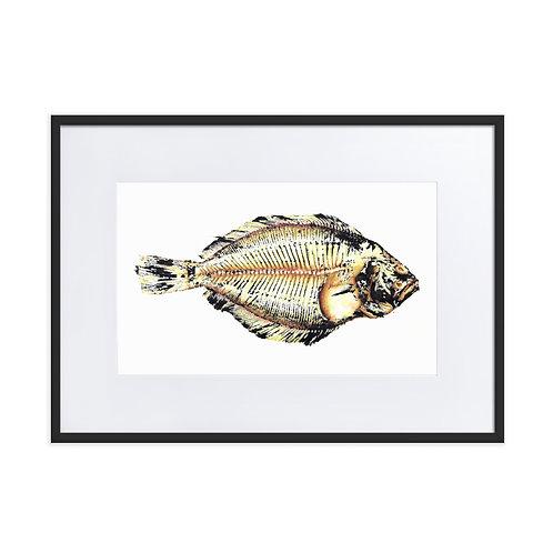 Matte Paper Framed Poster With Mat - Southern Flounder (IA69V1)
