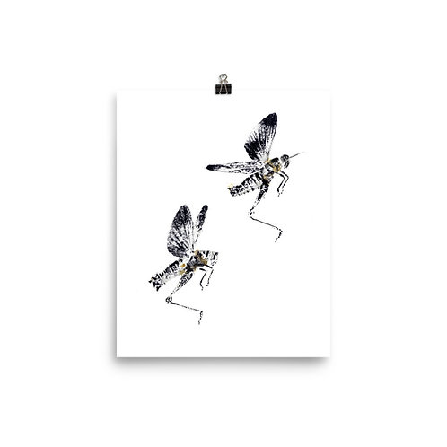 Poster - Differential Grasshopper (IA99V3)