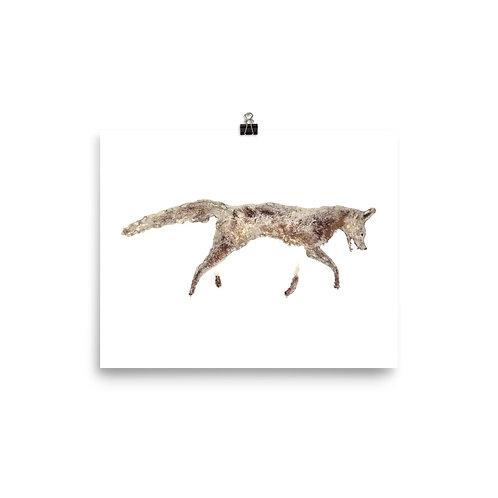 Poster - Grey Fox (IA80V1)
