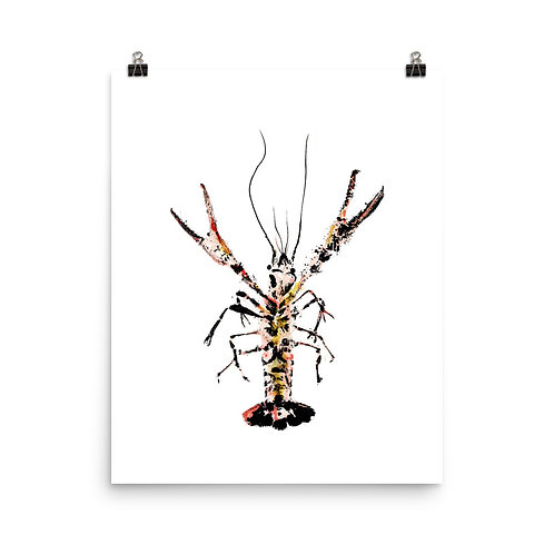 Poster - Red Swamp Crayfish (IA96V3)