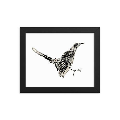 Framed photo paper poster - Northern Mockingbird (IA77V2)