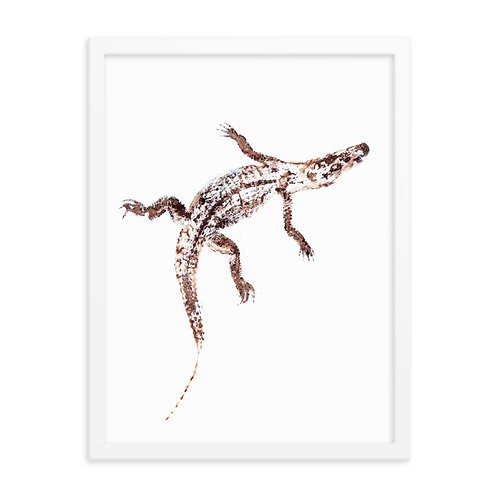 Framed photo paper poster - American Alligator (IA65V3)