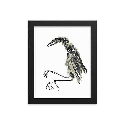 Framed photo paper poster - Great-tailed Grackle (IA76V2)