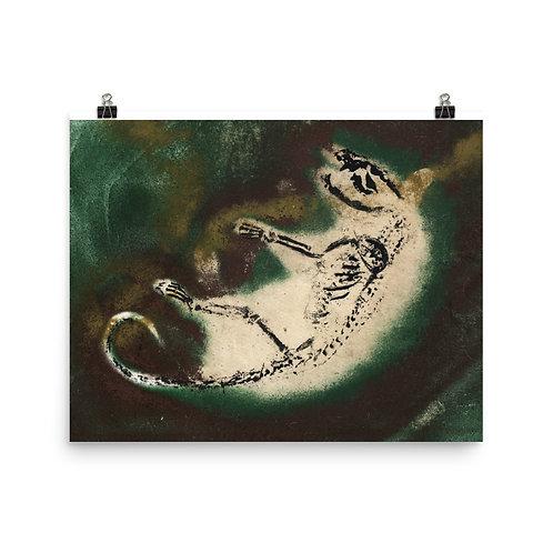 Poster - Virginia Opossum (IA100V1)