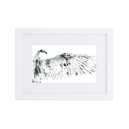 Matte Paper Framed Poster With Mat - Turkey Vulture (IA87V1)