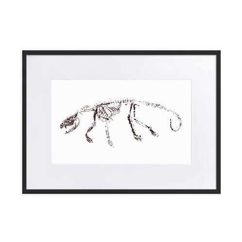 Matte Paper Framed Poster With Mat - Virginia Opossum (IA53V2)