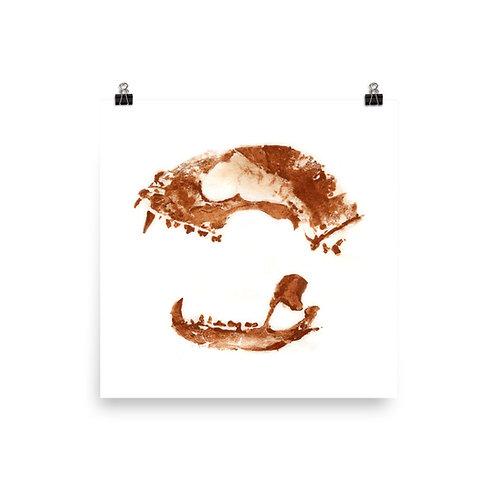 Poster - Racoon (IA51V1)