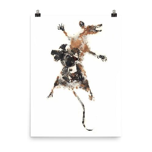 Poster - Virginia Opossum (IA53V1)